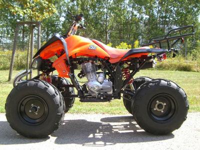 quad neuf prix discount modele 2011 le raptor 250 cc. Black Bedroom Furniture Sets. Home Design Ideas
