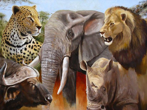 Riseingsouthernstar Africa Wild Life South Africa