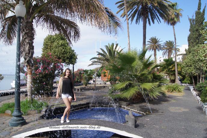 http://img.webme.com/pic/r/roxana-dellamorte/arrecife2.jpg