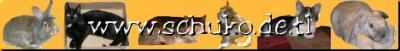 Scheinbar haben wir uns gesucht und gefunden, um gemeinsam für Tiere stark zu sein. Wir, das sind Reinhard, Nina und Carina. Viele Tiere nennen wir unser eigen, und ganz vielen konnten wir schon helfen in eine bessere Zukunft. Wir unterstützen viele Tierschutzprojekte im In und Ausland und stehen gerne mit Rat und Tat zur Seite. Um welche Projekte es sich handelt, kann man auf den nachfolgenden Seiten auf unserer Homepage nachlesen.
