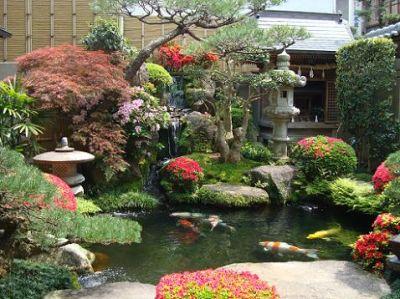 El cuidado de las plantas y el jardin jardines orientales for Casa y jardin tienda madrid