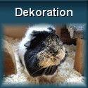Dekoration für Meerschweinchen