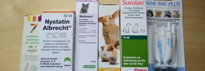 Medikamente für Meerschweinchen und andere Tiere