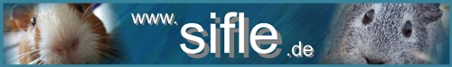 SIFLE Meerschweinchen Spiele Eigenbauten Unterhaltung