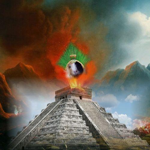 Meerschweinchen Gottheit bei den Atzteken Maya und Inka Bause