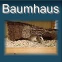 Meerschweinchen-Baumhaus