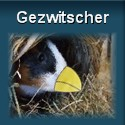 Ouml;tti-Gezwitscher