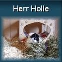 Herr Holle