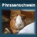 Sprichwörter von Meerschweinchen