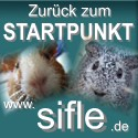 Der Startpunkt von www.sifle.de
