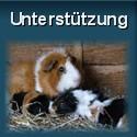sifle.de unterstuetzen