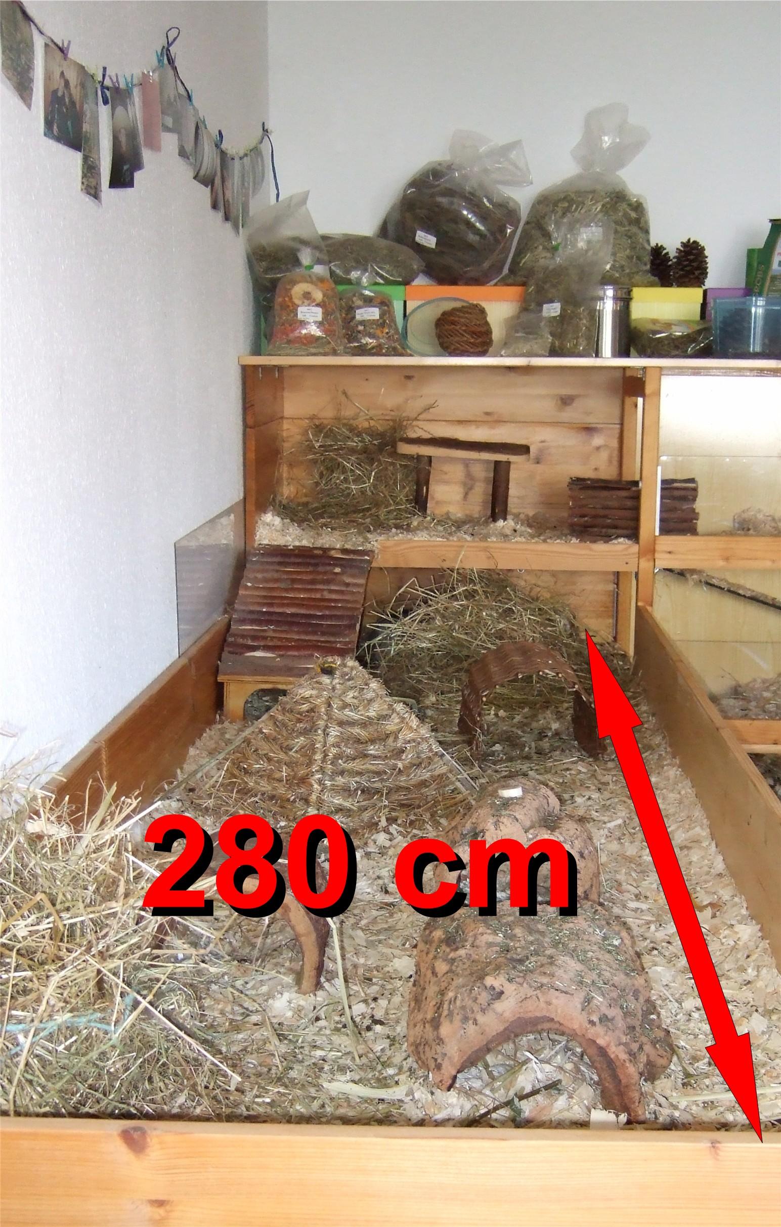 Meerschweinchen Eigenbau Länge