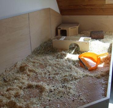 Reinigung vom Schweineheim