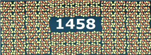 1458 Meerschweinchen