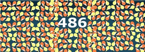 486 Meerschweinchen