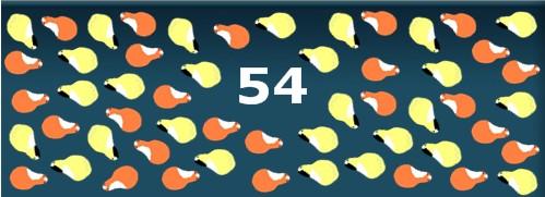54 Meerschweinchen