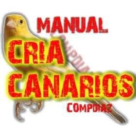 silvestrismo1 manual cria de canarios