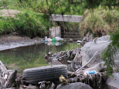 principales rios de colombia. Ríos: Los principales Ríos