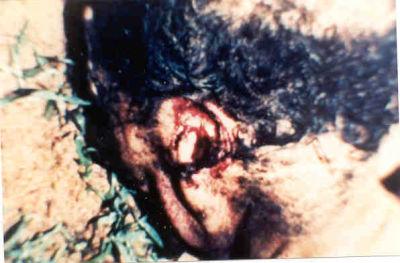 La mutilaciones de ganado extraterrestre ademas mataron a un HOMBRE IMPRESIONANTES IMAGENES Mute2ai5