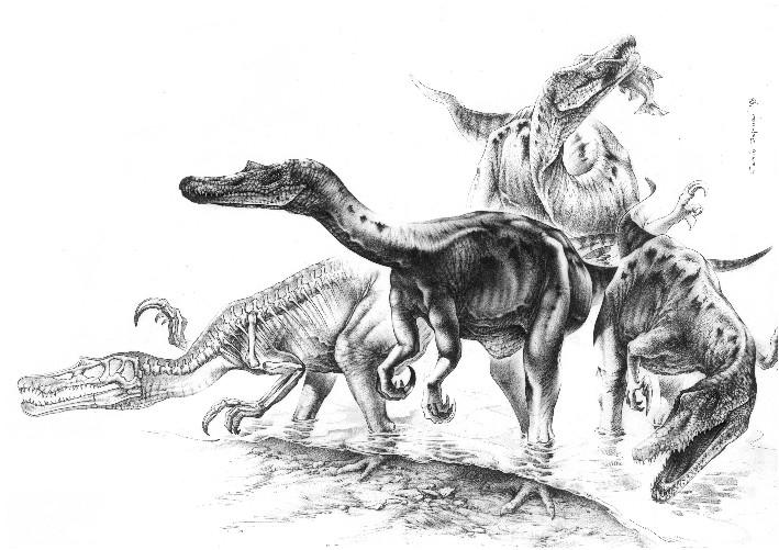 irritator dinosaur coloring pages | Spinosauridae - Dessins