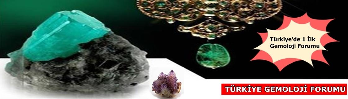 Türkiye Gemoloji Forumu