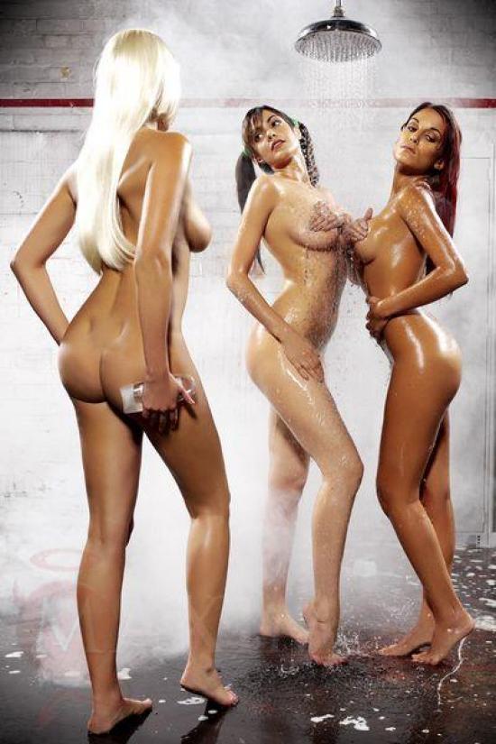 vivid sydney leathers porno