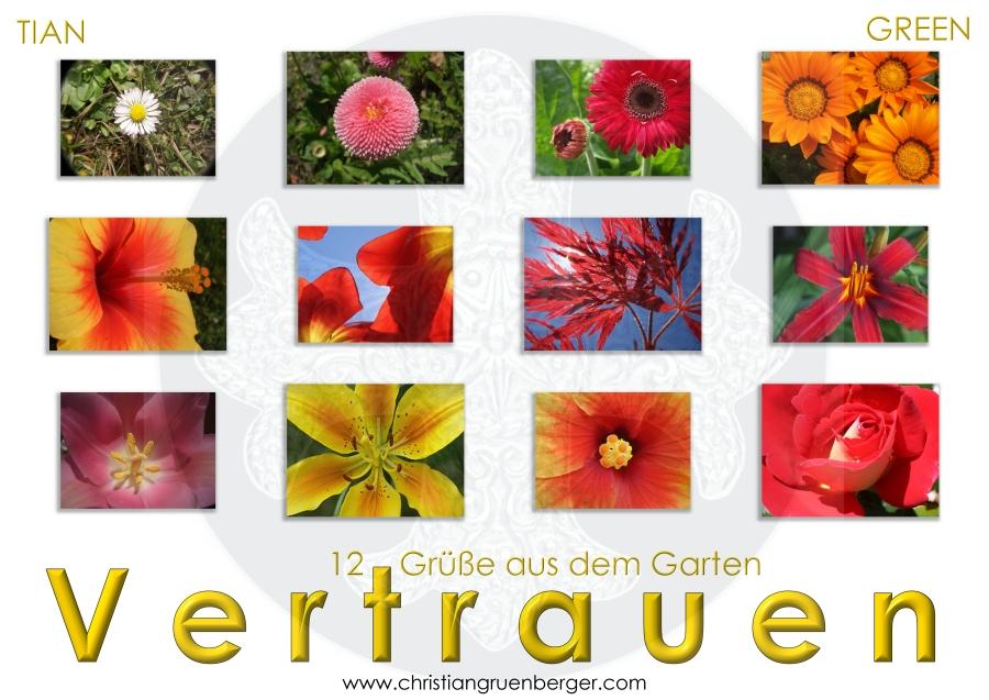 Blühende Natur von christian grünberger TIAN GREEN