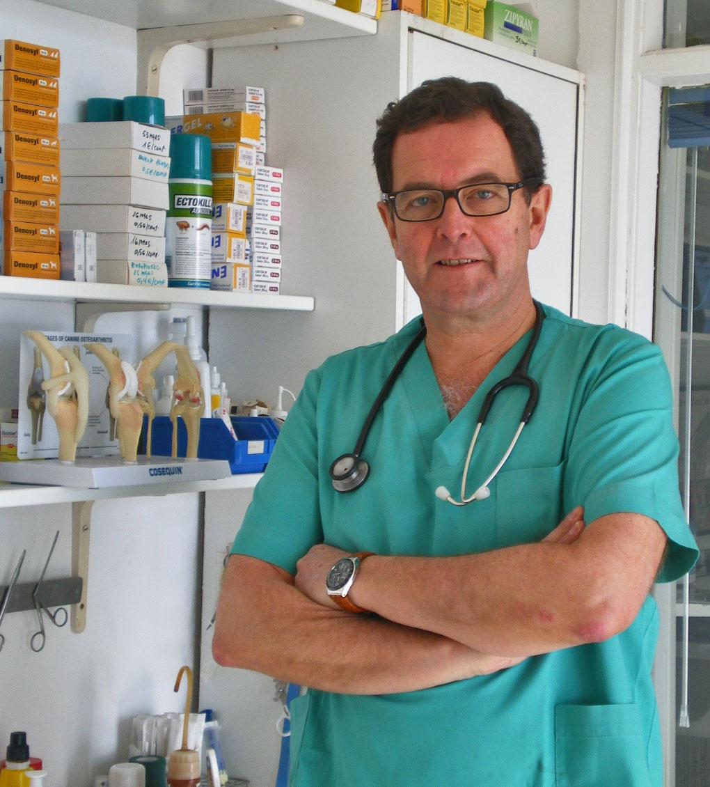 Cl nica veterinaria el escorial veterinarios for Clinica dental el escorial