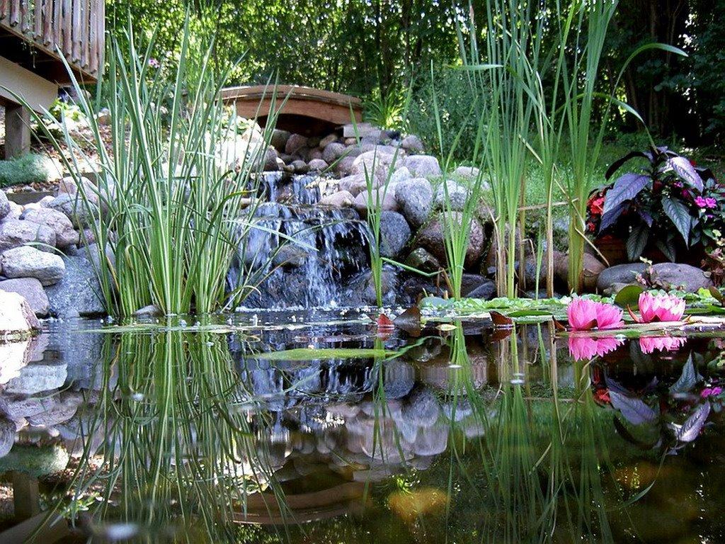 Jardines misticos y holisticos galeria de fotos for Jardines feng shui