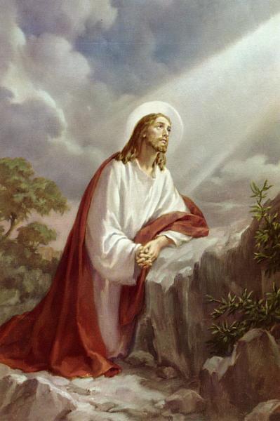 Viva Padre Pio Misteri Dolorosi