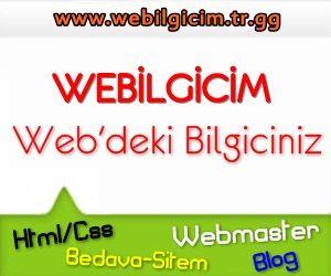 Webilgicim
