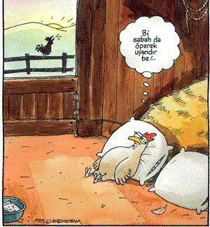 Karikatür komik karikatürler