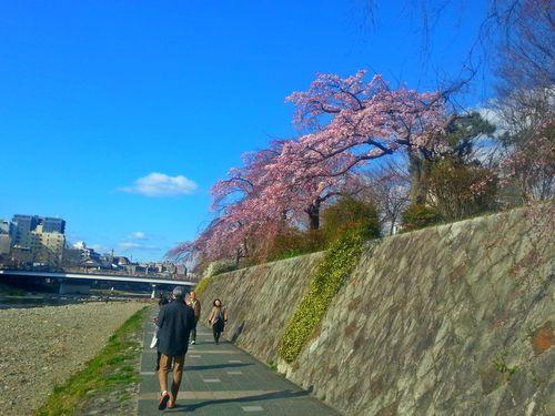 26. marts 2016: Kyoto