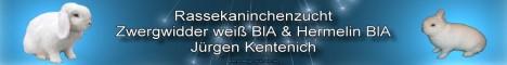 Rassekaninchenzucht Jürgen Kentenich