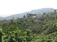 Kurbanpınarı Köyü Resimleri Bayburt