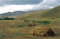 Çerçi Köyü Resimleri