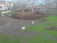 Eymur Köyü Resimleri Demirözü