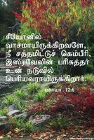 PROVERB IN TAMIL