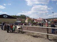 Pferdemarkt in Mürsbach