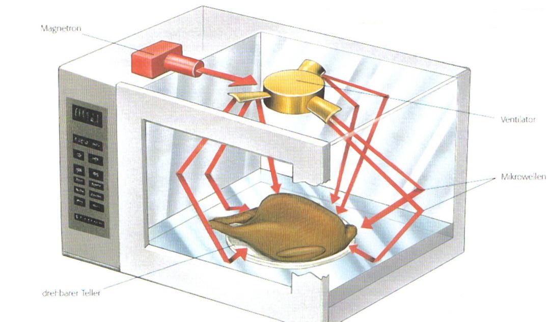 worum sich das leben dreht wie funktioniert eine mikro. Black Bedroom Furniture Sets. Home Design Ideas