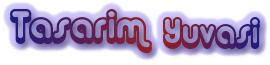 CSS Web Tasarım Logo