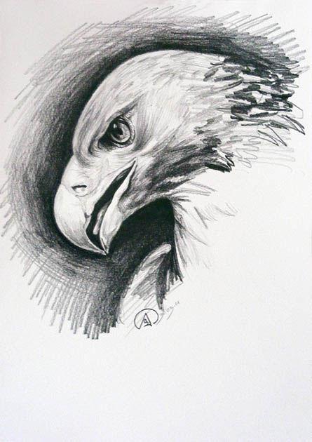 andere schriftzug bilder zeichnung - photo #16