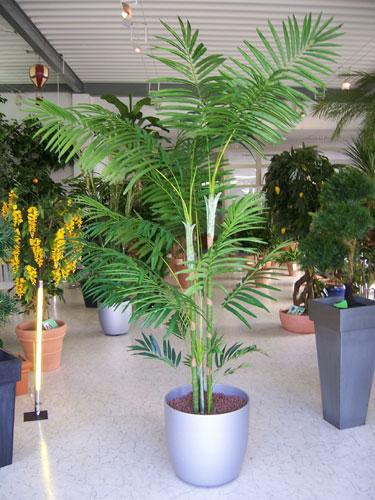 Ab tu jardin plantas artificiales for Jardines con plantas artificiales