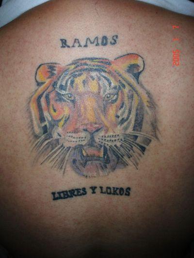 Tigres Manda
