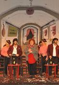 Los flamencos de doñana
