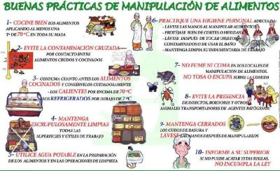 Alimentos nelmar de colombia buenas practicas en alimentos for Normas de higiene personal en la cocina