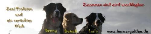 Laila, Benny und Butsch