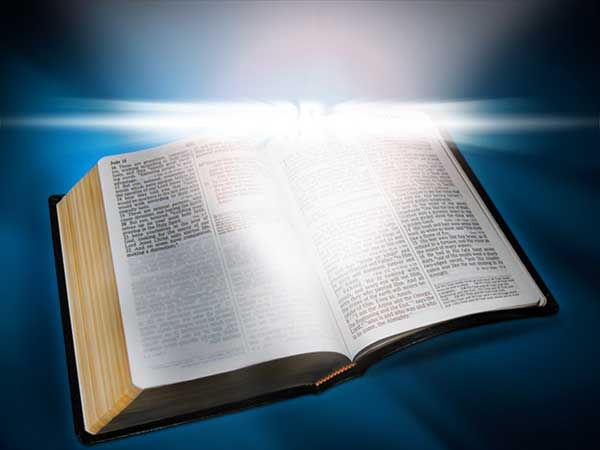 La palabra del Señor es vida eterna