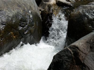 Rio frio vereda Loman