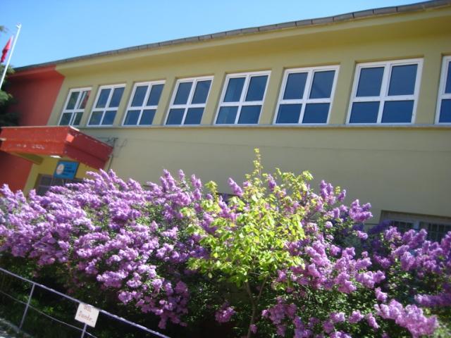 At6aköy İlköğretim Okulu